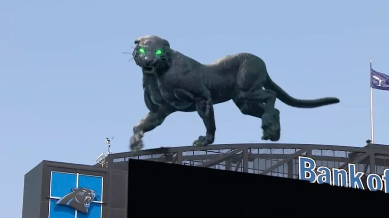 Here's the tech behind the Carolina Panthers' giant AR cat